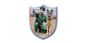Huấn luyện chó, trường huấn luyện chó